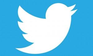 twitter bird, twitter logo